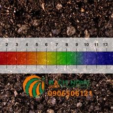 Những loại rau thích có độ pH đất từ 6 đến 6,8
