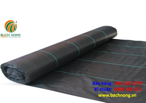 Bạt phủ trải có có bề mặt láng bóng
