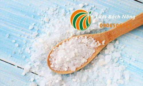 Công thức pha muối để diệt cỏ dại
