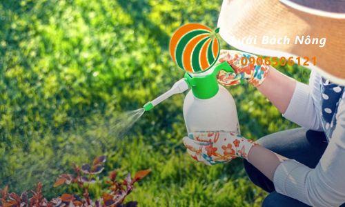 Những lưu ý khi sử dụng muối diệt cỏ