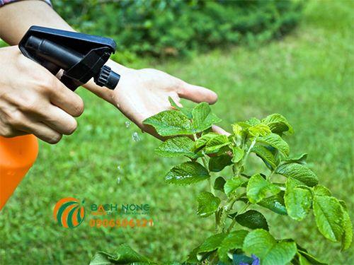 Tìm hiểu về thuốc trừ sâu hữu cơ